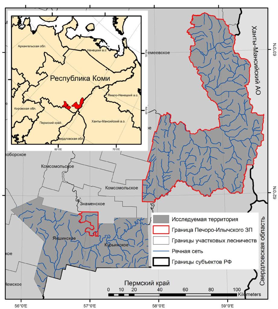 Район исследования - территория Печоро-Илычского заповедника, Курьинского и Якшинского участковых лесничеств