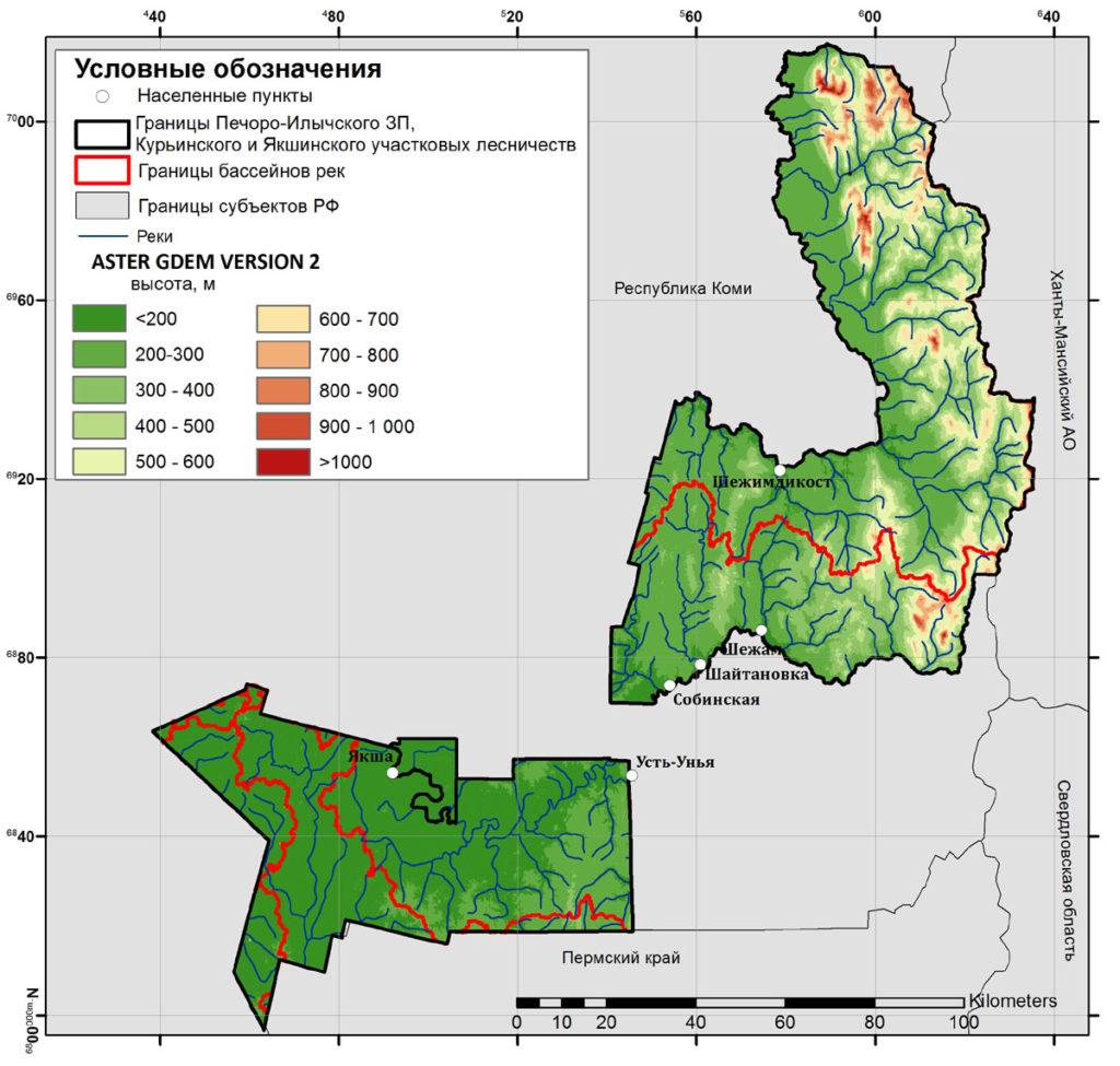 Границы бассейнов рек, выделенные инструментом «Basin»