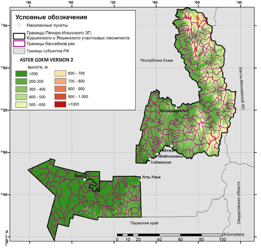 Границы бассейнов рек, выделенные инструментом «Watershed»