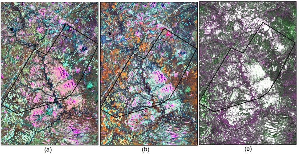 Весеннее (а), летнее (б), зимнее (в) спутниковые изображения Landsat-8 на исследуемой территории