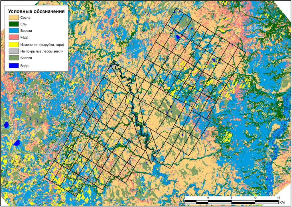 Карта классов наземного покрова исследуемого участка