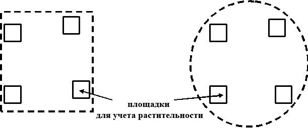 Примеры схем размещения учетных площадок на территории ППН