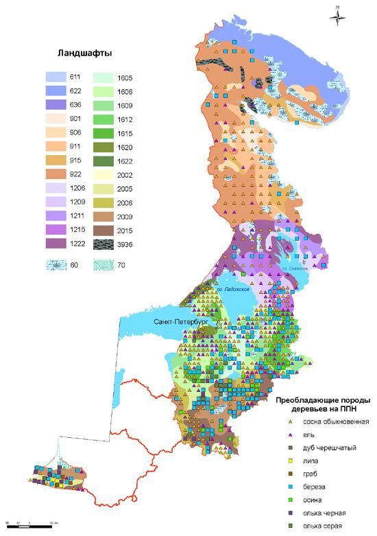 Преобладающие породы деревьев на ППН и типы ландшафтов