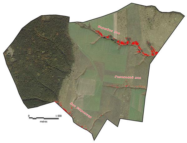 Схема проективных покрытий миндаля низкого на Казацком участке ЦЧЗ, 2013 г.