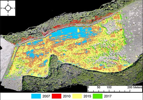 Динамика зарастания залежи древесной растительностью. Составлено по результатам визуального дешифрирования космических снимков и материалов с БПЛА