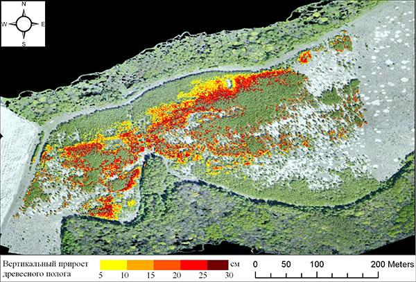 Вертикальный прирост древесного полога на залежи за 2015–2017 гг. Построено по материалам разновременной съемки с БПЛА