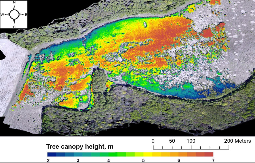 The height of the tree canopy formed on the fallow by 2018. Created on the basis of materials of a multi-seasonal UAV survey