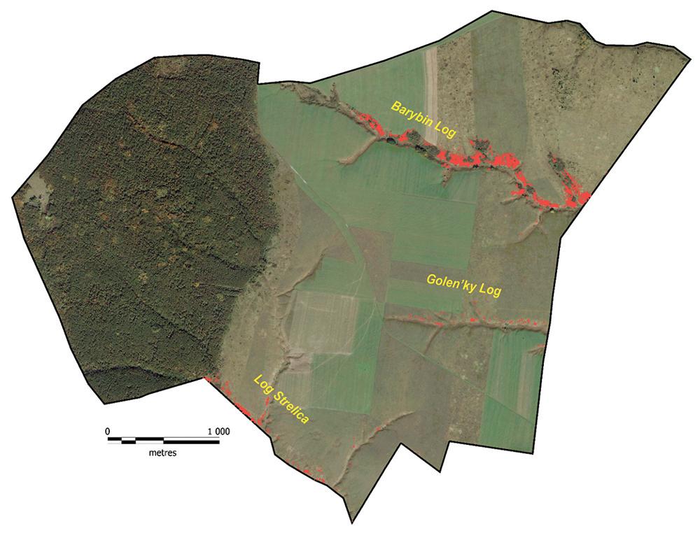 Figure 19. Scheme of projective covers of dwarf almond on Kazatsky site of the CCR, 2013