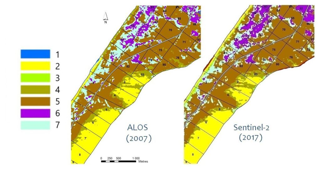 Results of the Curonian Spit vegetation classification after combining classes for ALOS and Sentinel images; classes: 1 – water bodies, 2 – sand dunes, beach, 3 – meadow vegetation, 4 –psammophilic vegetation, 5 – pine forests, 6 – black alder forests, 7 – birch forests