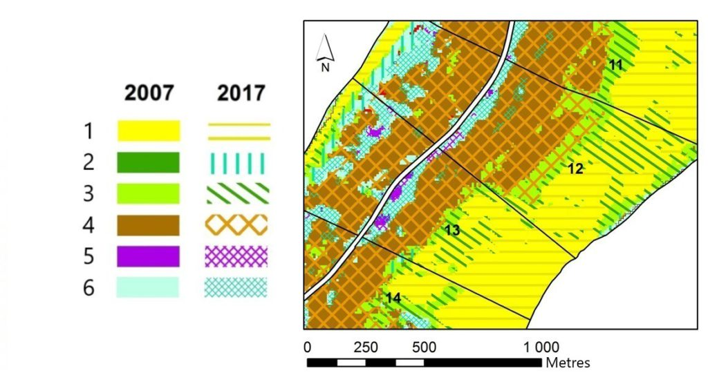 Fragment of a map of the multi-temporal state of vegetation on the territory of the 12th and 13th compartments of Zelenogradskoye forest district. Classes: 1 – sand dunes, beach, 2 – meadow vegetation, 3 – psammophilic vegetation, 4 – pine forests, 5 – black alder forests, 6 – birch forests