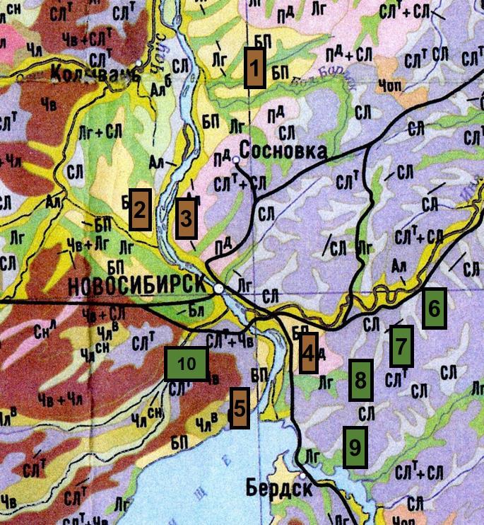 Рисунок 1. Фрагмент почвенной карты Новосибирской области с исследованными борами и мелколиственными лесами Условные обозначения: Сосновые боры: 1 – окрестности п. Сосновка; 2 – Кудряшовский бор; 3 – Заельцовский бор; 4 – окрестности с. Барышево; 5 – Чемской бор; Мелколиственные леса в окрестностях населенных пунктов: 6 – ст. Шелковичиха; 7 – с. Быково; 8 – п. Кольцово; 9 – п. Морозово; 10 – с. Верх-Тула