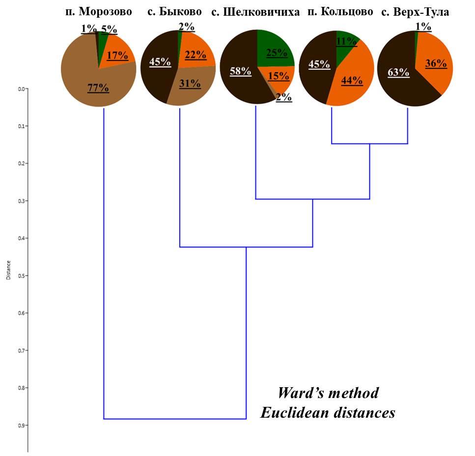 Рисунок 3. Соотношение жизненных форм дождевых червей в мелколиственных лесах  Примечание: здесь и далее условные обозначения как для рис. 2