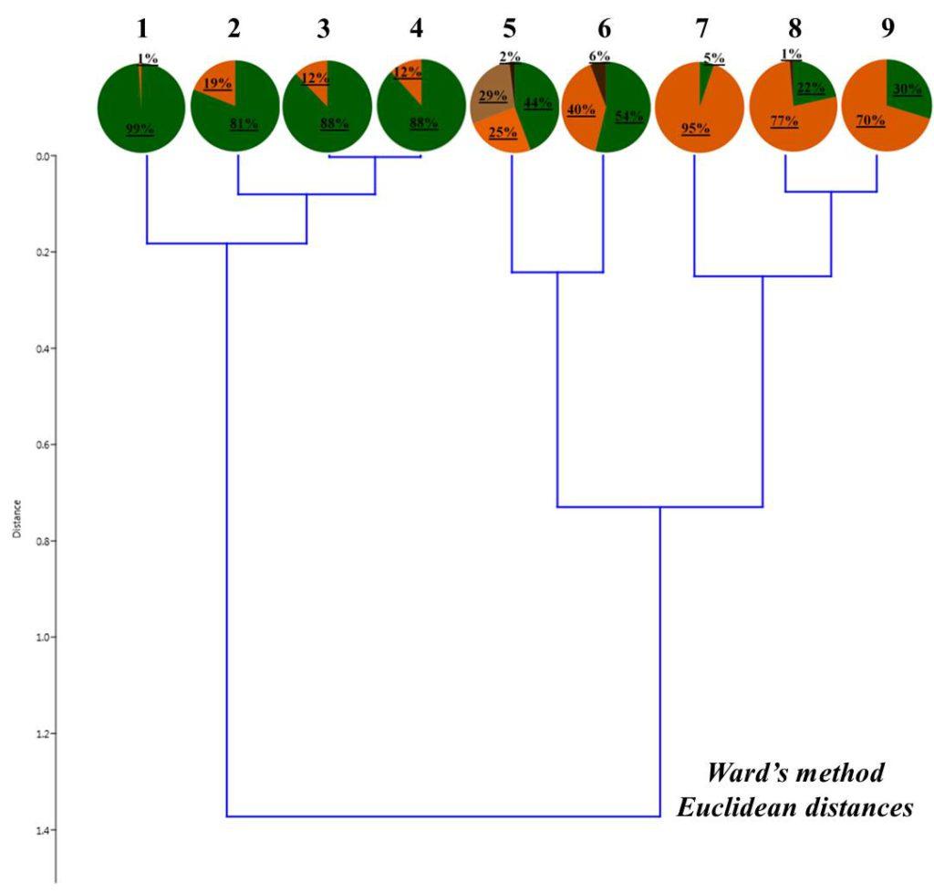 Рисунок 4. Соотношение жизненных форм дождевых червей в валежнике Условные обозначения:1– Барышево (сосна ст. 2); 2 – Быково (береза 1 ст. 2); 3 – Заельцовский бор (сосна, ст. 2); 4 – Барышево (береза, ст. 3); 5- Барышево (сосна, ст. 3); 6 – Чемской бор (береза, ст. 2); 7 – Быково (береза 2, ст. 2); 8 – Быково (береза ст. 3); 9 – Кольцово (береза, ст. 2)